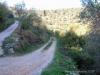 Incomincia la ripulitura dell\'oliveto nei pressi del Centro Parco